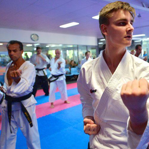 adults-karate-1.jpg